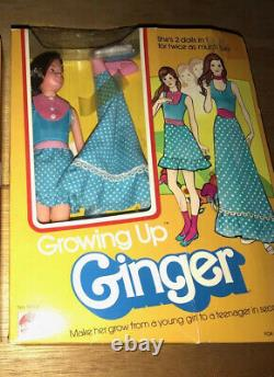 Vintage Barbie Growing Up Ginger Doll Very Rare With Box (1975-77)